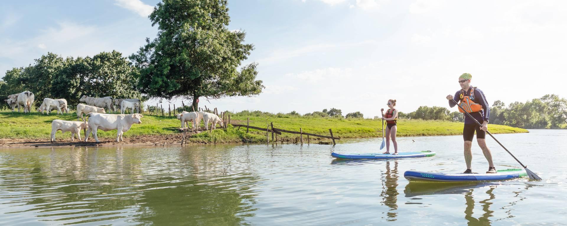 Personnes sur des paddles sur la rivière Sarthe