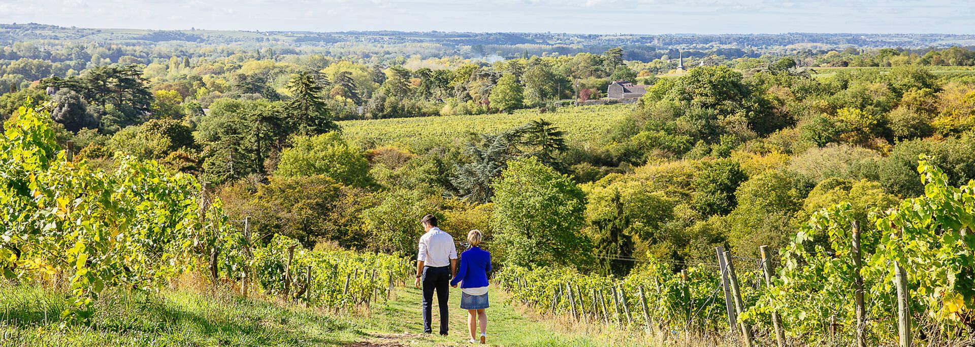 Top 5 best walks around Angers