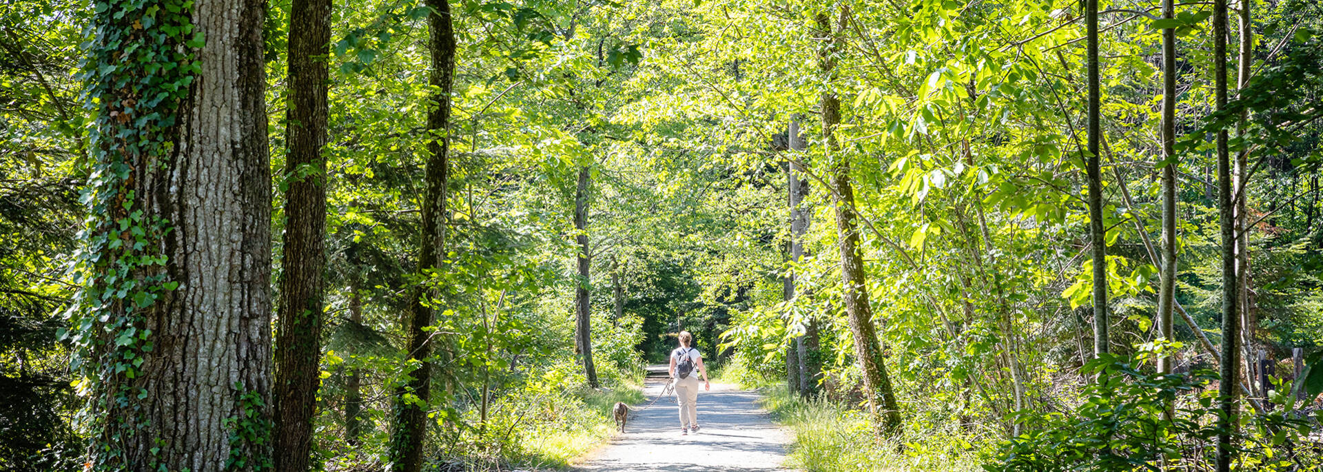 Femme promenant son chien dans le parc de Pignerolle