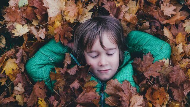 L'automne © Annie Spratt