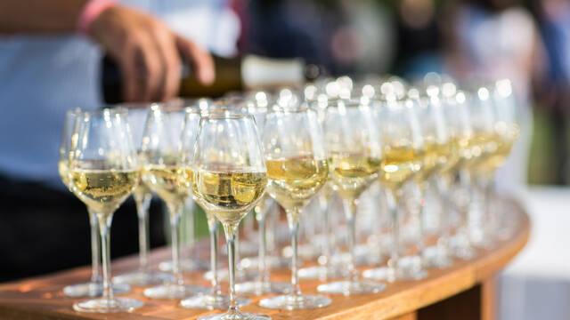 Dégustation de vins d'Anjou Saumur © Pierre le Targat