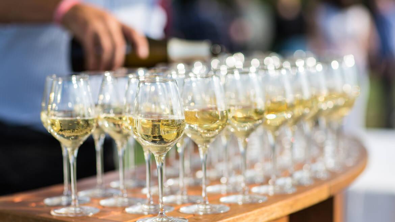 Cata de vinos de Anjou Saumur © Pierre le Targat