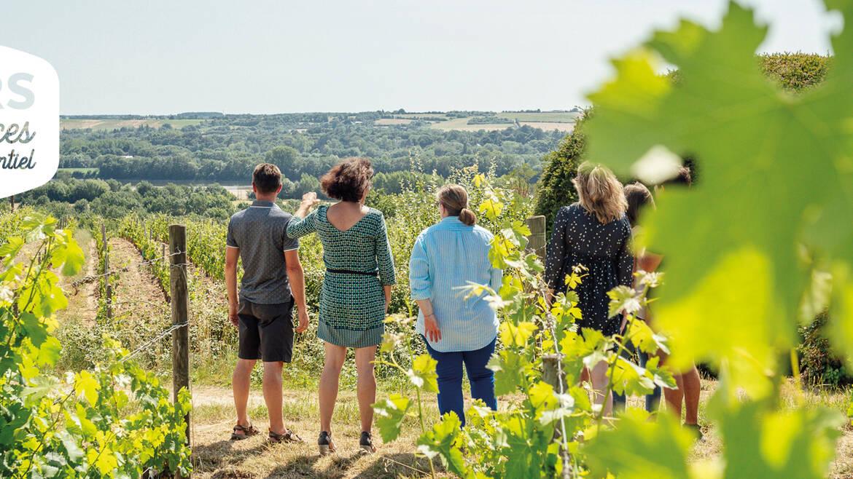Vue sur la Loire depuis le vignoble de Savennières © Les Conteurs