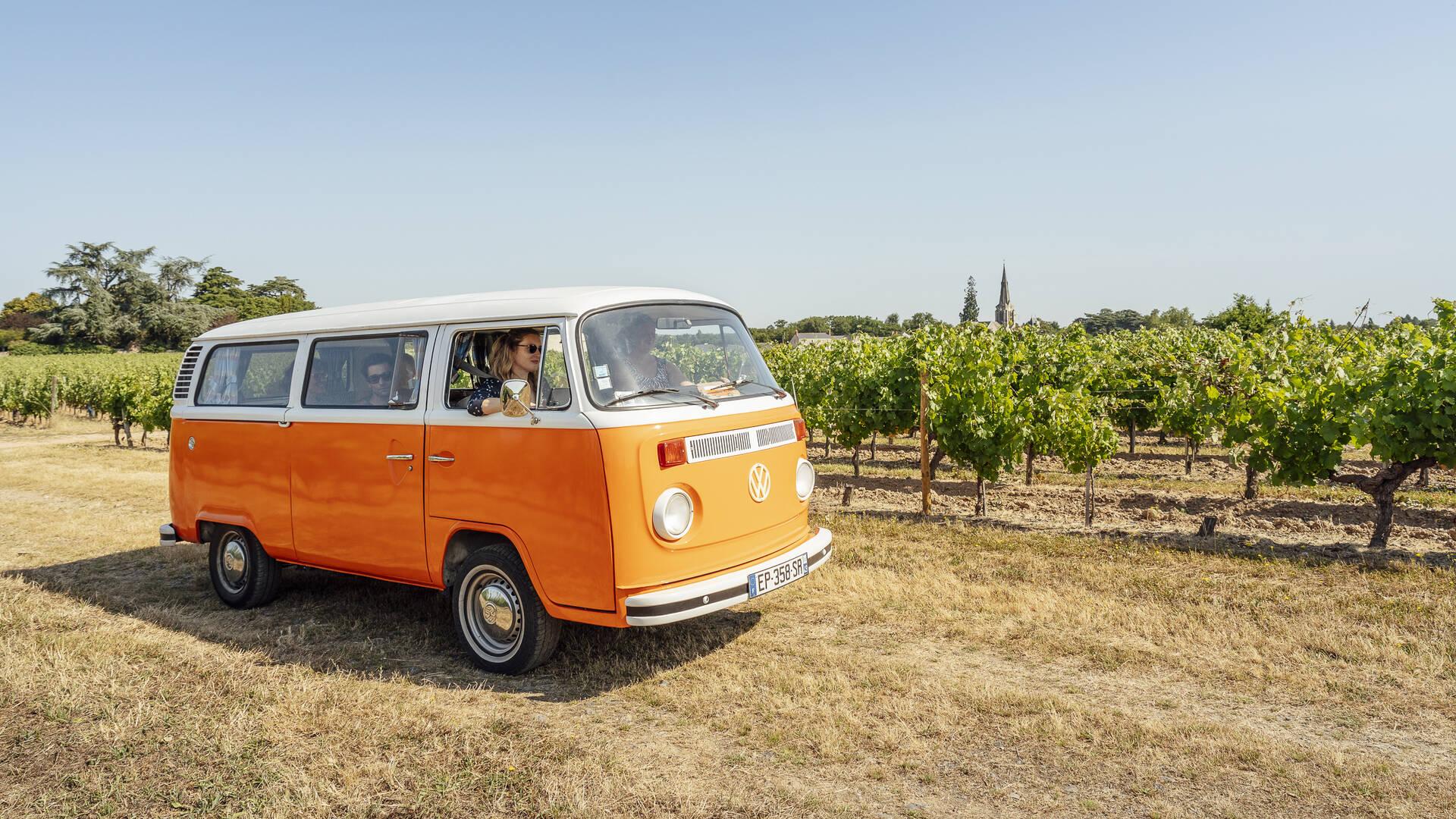 Angers, vins et escapade, en combi dans le vignoble © Christophe Martin