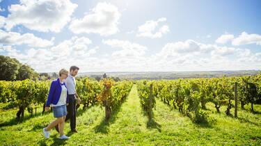 Vignoble de Savennières © Les Conteurs