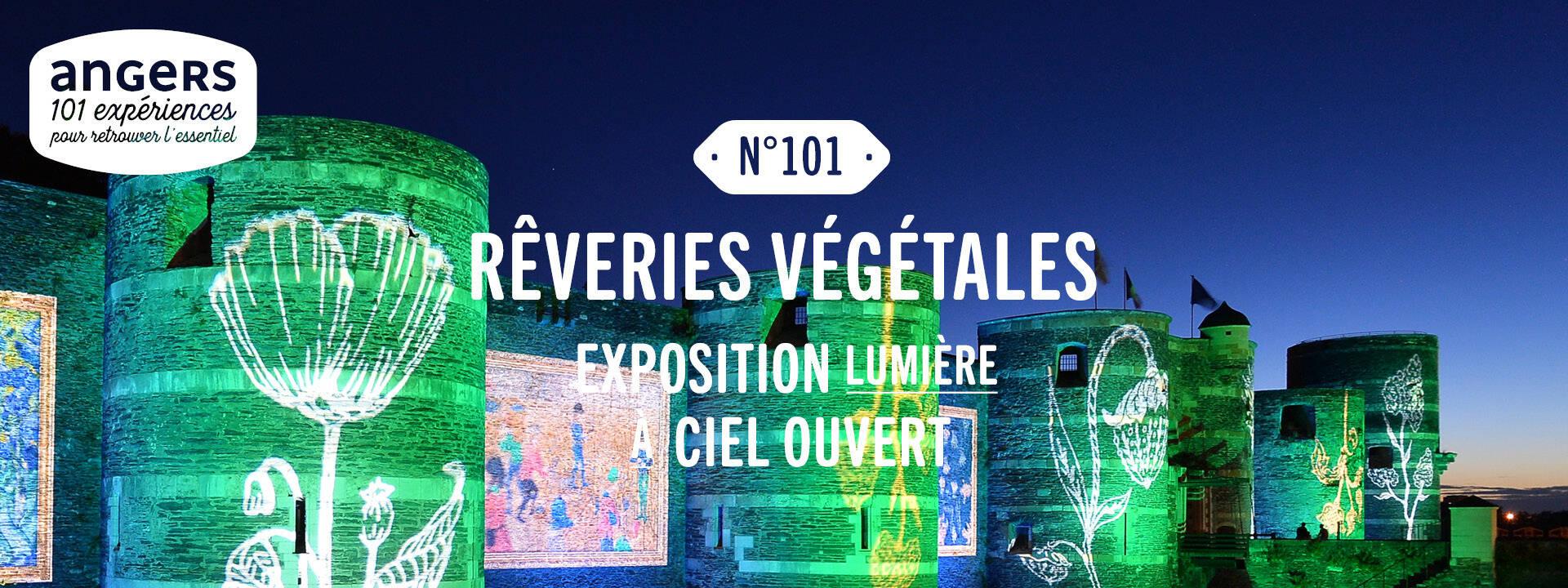 Rêveries végétales, illuminations de l'été Angers