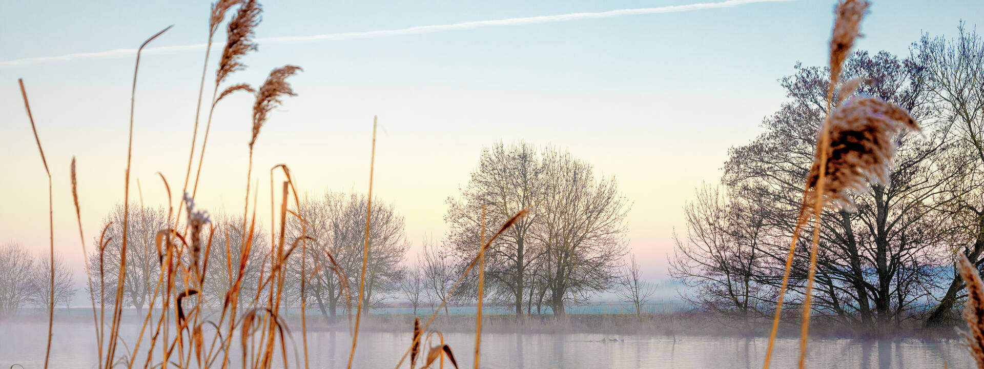 Banks of the Loir during winter © Dorothée Mouraud / Destination Angers