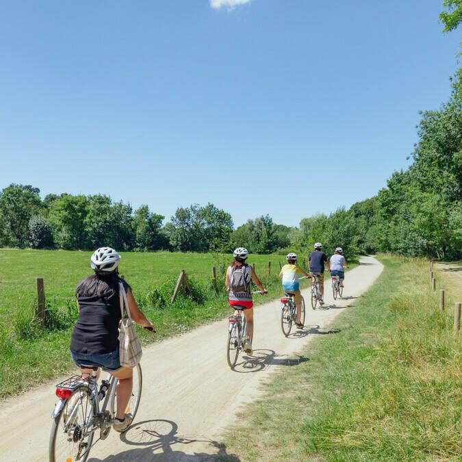 Balade à vélo en famille dans la nature