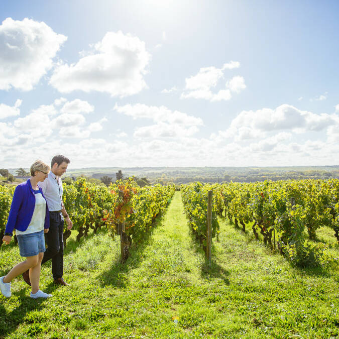 Walk in the vineyard : gift idea © Les Conteurs