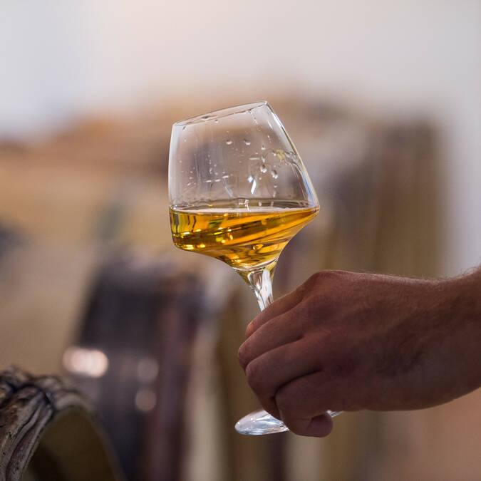 Vins d'Anjou © Domaine des Giraudières - Jean-Sébastien Évrard