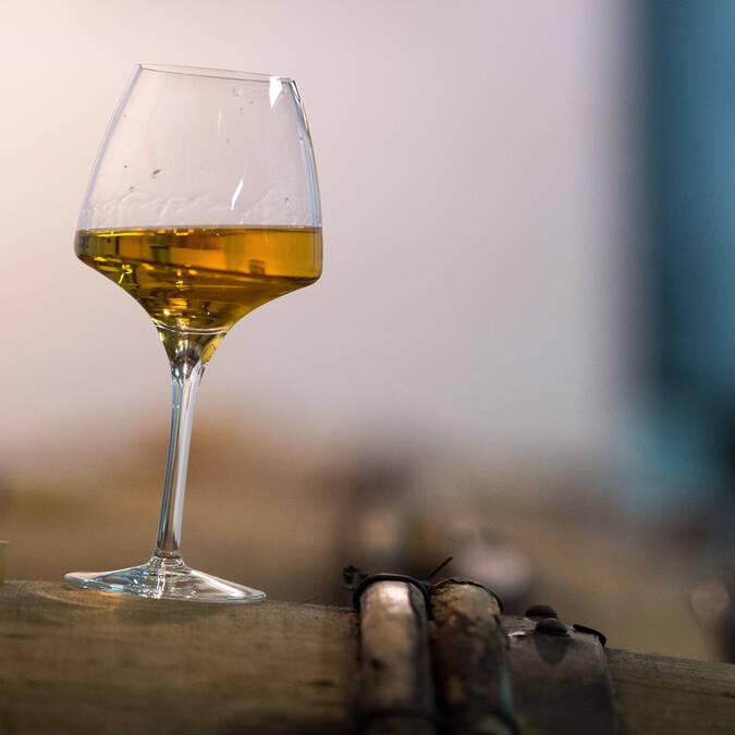 Dégustation de vin - Domaine des Giraudières © Jean-Sébastien Évrard