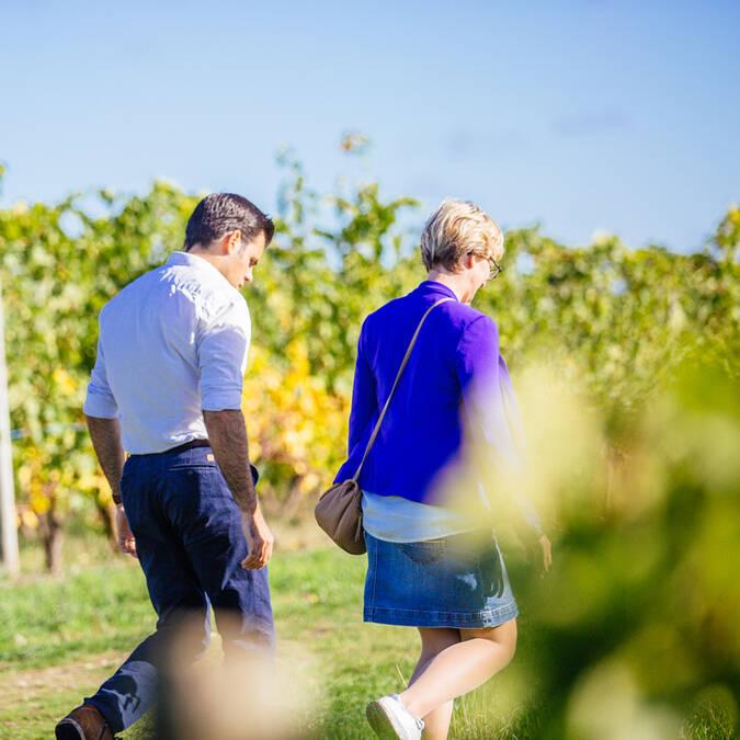 Recorre las rutas del vino del valle del Loira, à Angers © Les Conteurs