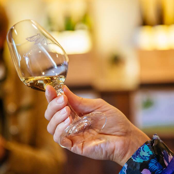 Dégustation de vin - Domaine du Closel © Les Conteurs