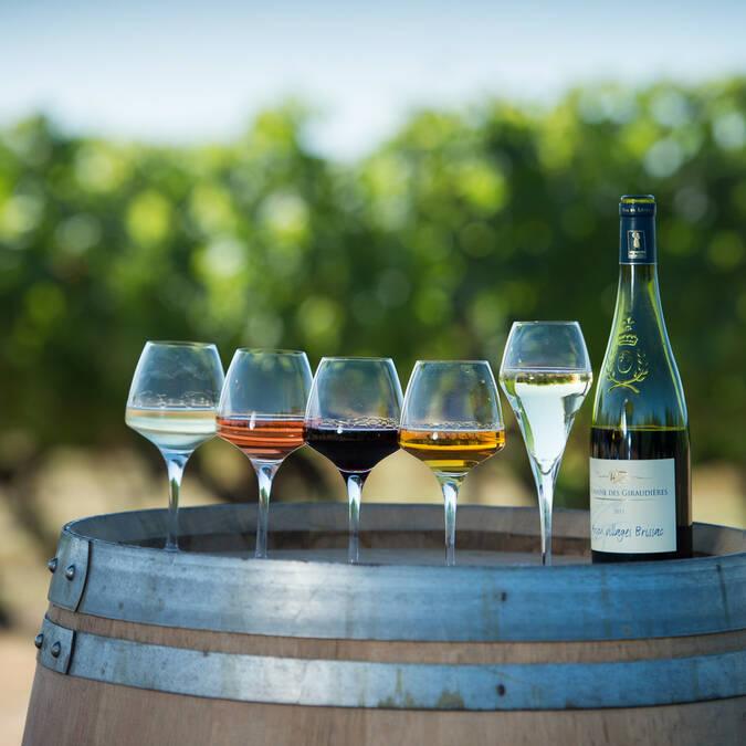 Palette des vins d'Anjou © Domaine des Giraudières - Jean-Sébastien Évrard