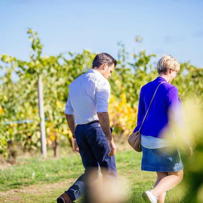 Route des vins de la Loire © Les Conteurs