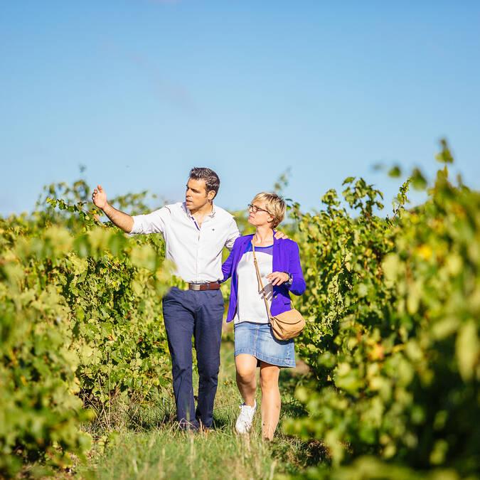 Week-end au coeur du vignoble de de Savennières - Angers © Les Conteurs