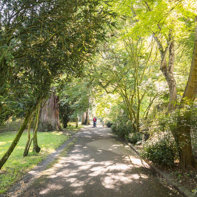 L'Arboretum Gaston Allard